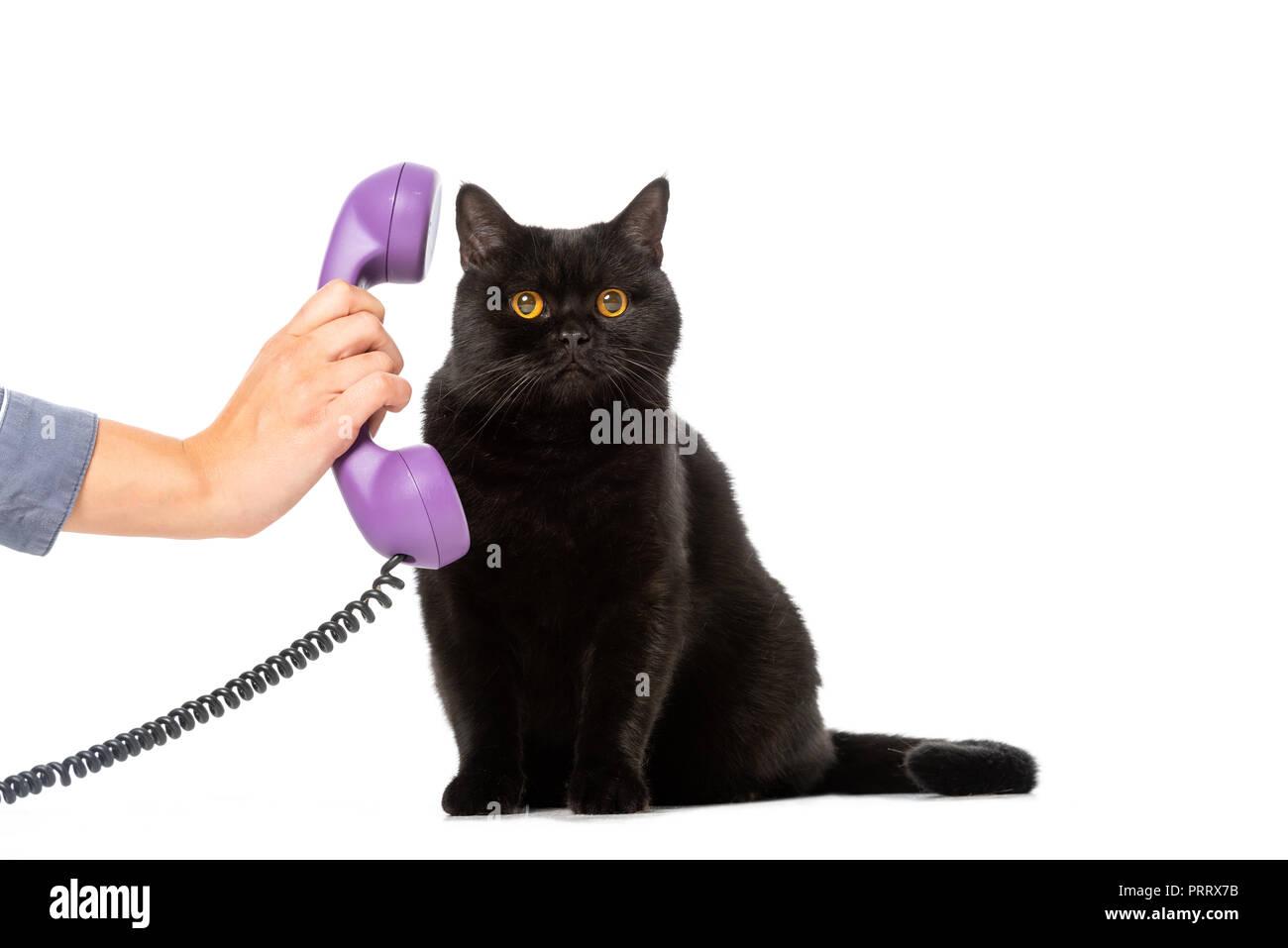 Vista Parziale Di Donna Che Tubo Di Telefono Alla Cute Black British