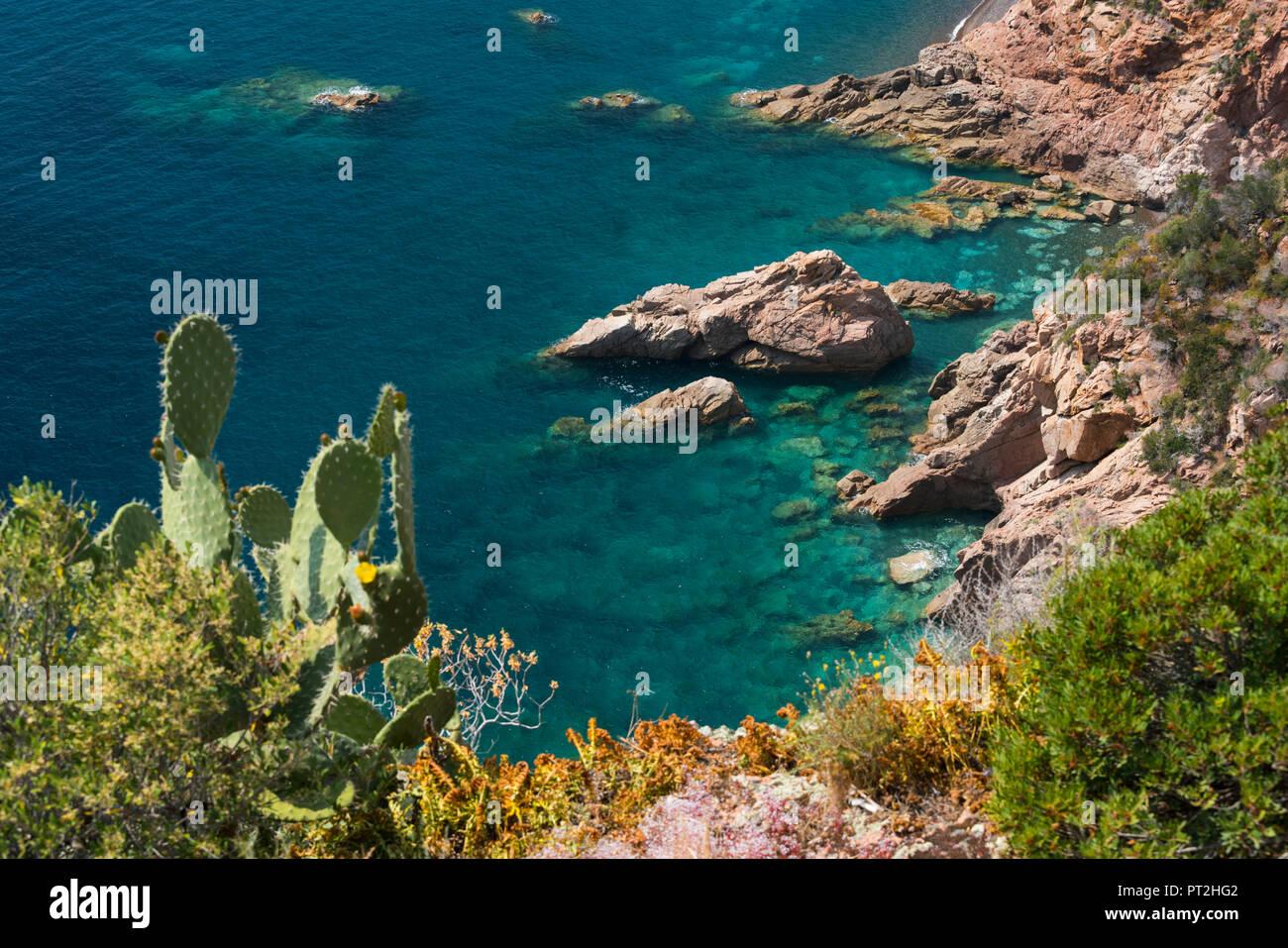 Costa di Bussaglia, Golfe di Porto, Corsica, Francia Immagini Stock