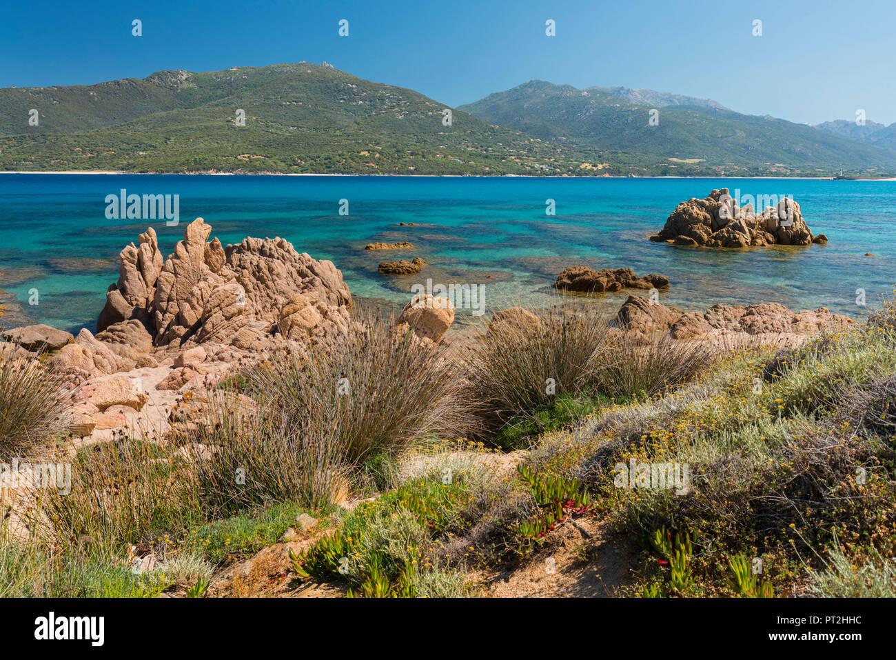 La costa del Golfo di Propriano, Corse du Sud, Corsica, Francia Immagini Stock