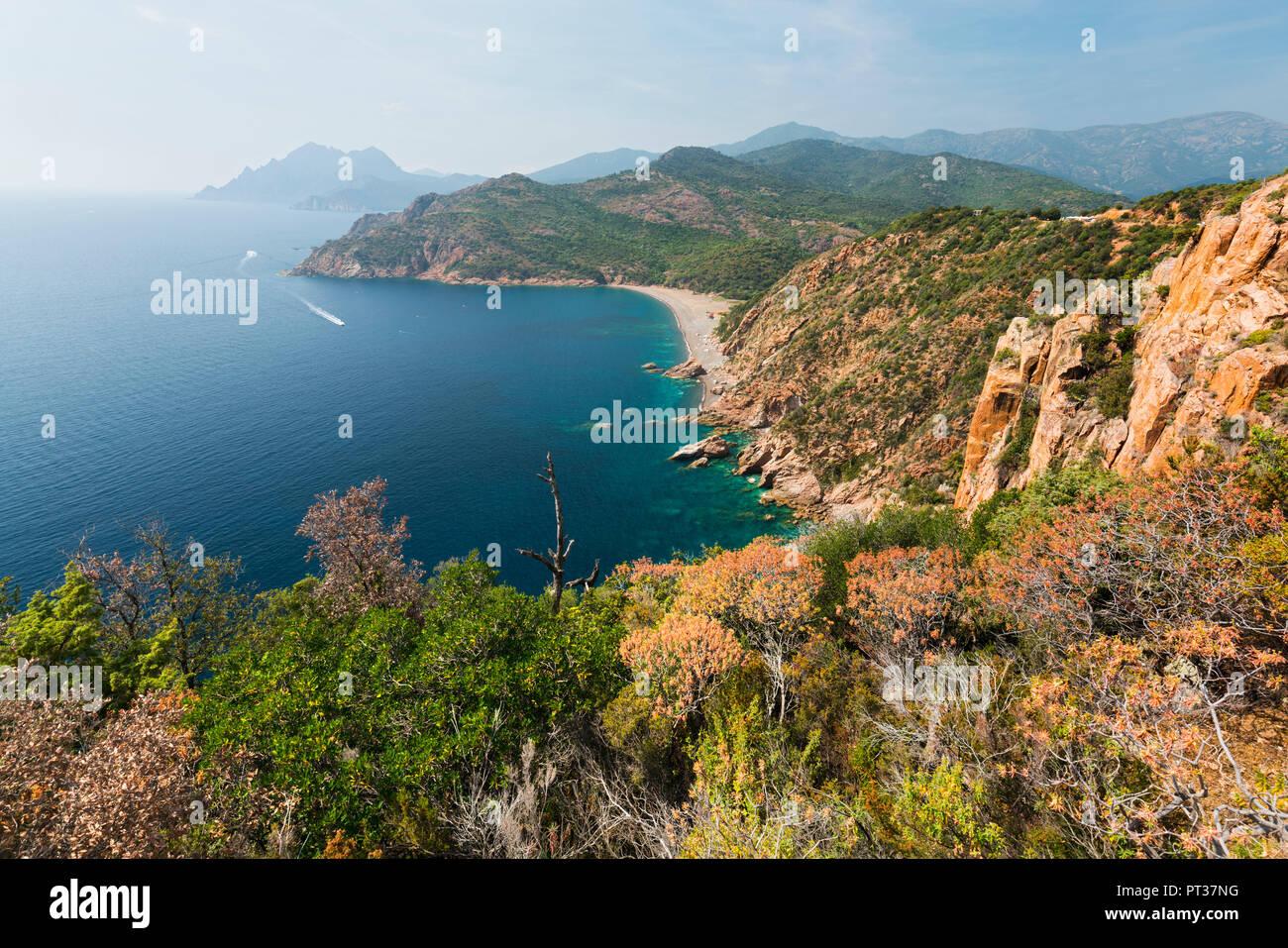 Bussaglia, cliff costa, Golfe de Porto, Corsica, Francia Immagini Stock