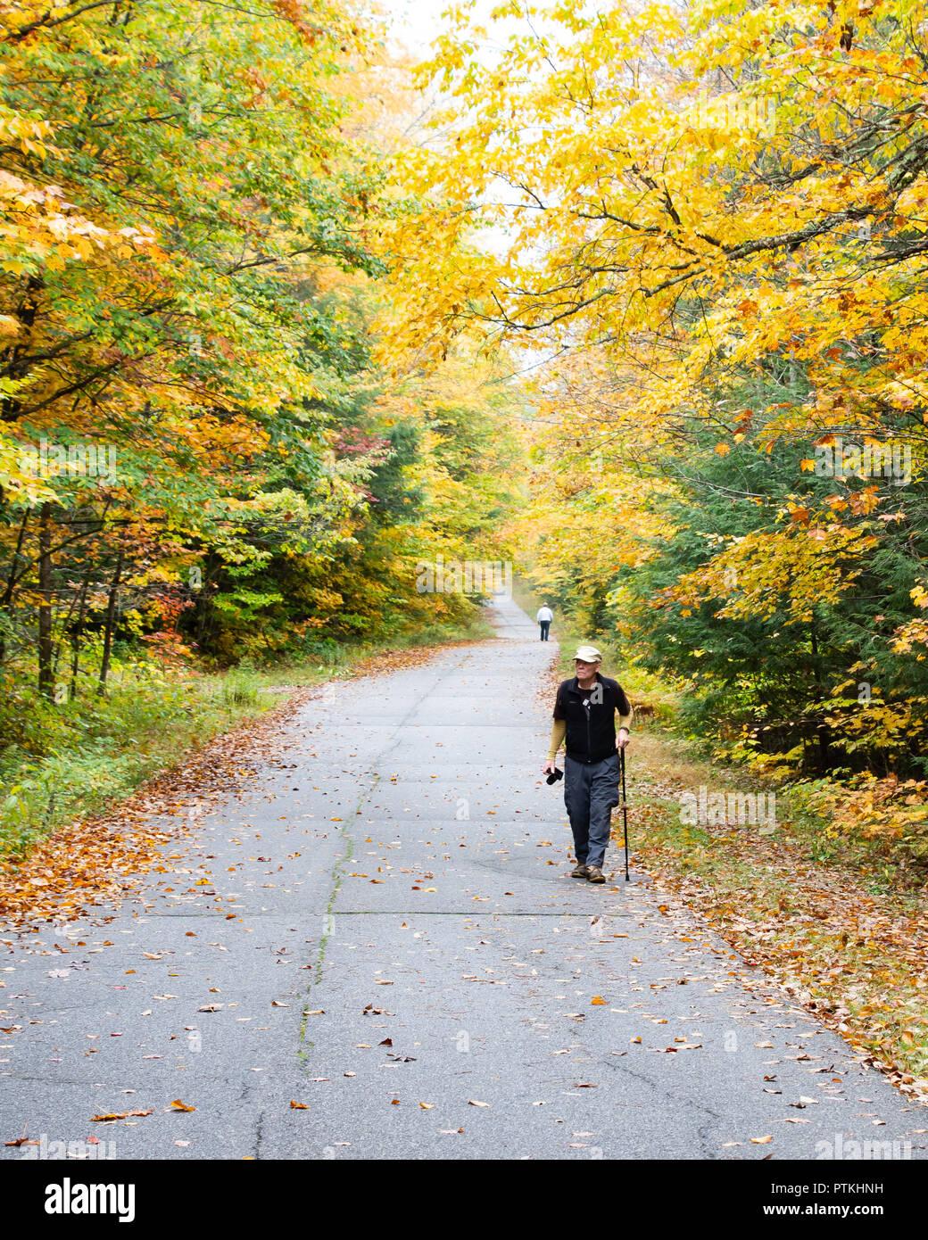 Due uomini anziani a camminare su una strada abbandonata nelle Montagne Adirondack, NY USA deserto colorato con la caduta delle foglie. Immagini Stock