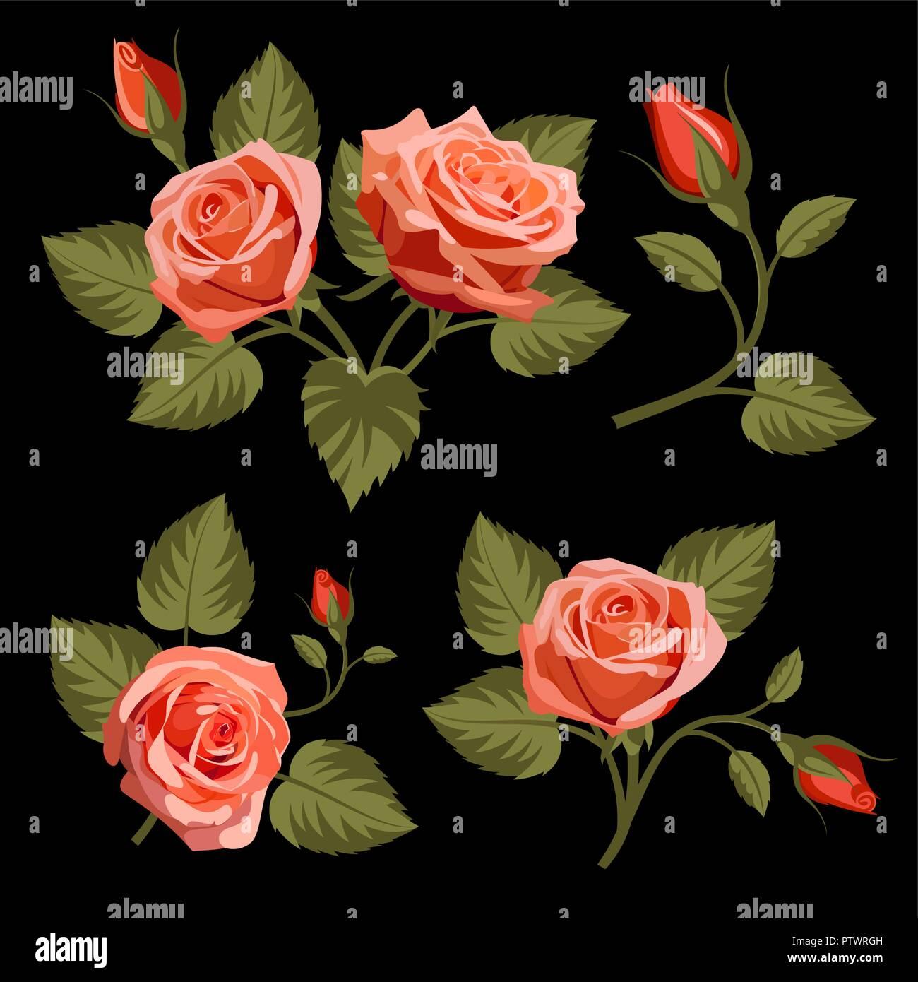 Set Di Rose Rosse Su Sfondo Nero Utilizzare Per Il Disegno Di