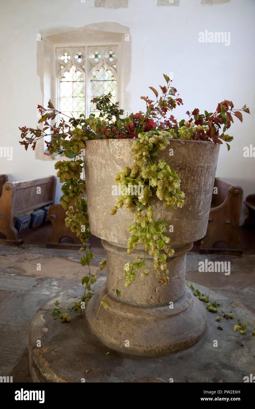 Chiesa di Kelmscott font decorate con il luppolo per il Festival dei Raccolti Immagini Stock