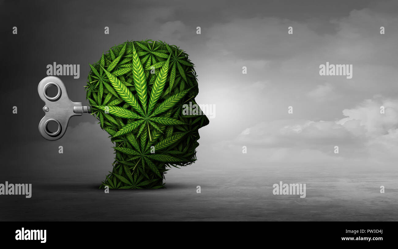 Cannabis e funzione mentale con l'uso della marijuana come psichiatrico o della psichiatria concetto degli effetti sul cervello con attività ricreative. Immagini Stock