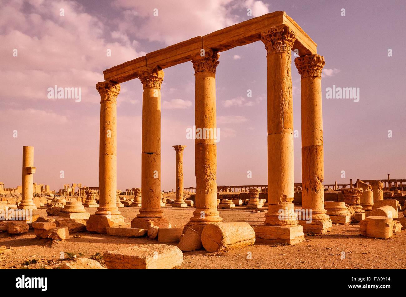 Antiche colonne di Palmyra, Siria Immagini Stock