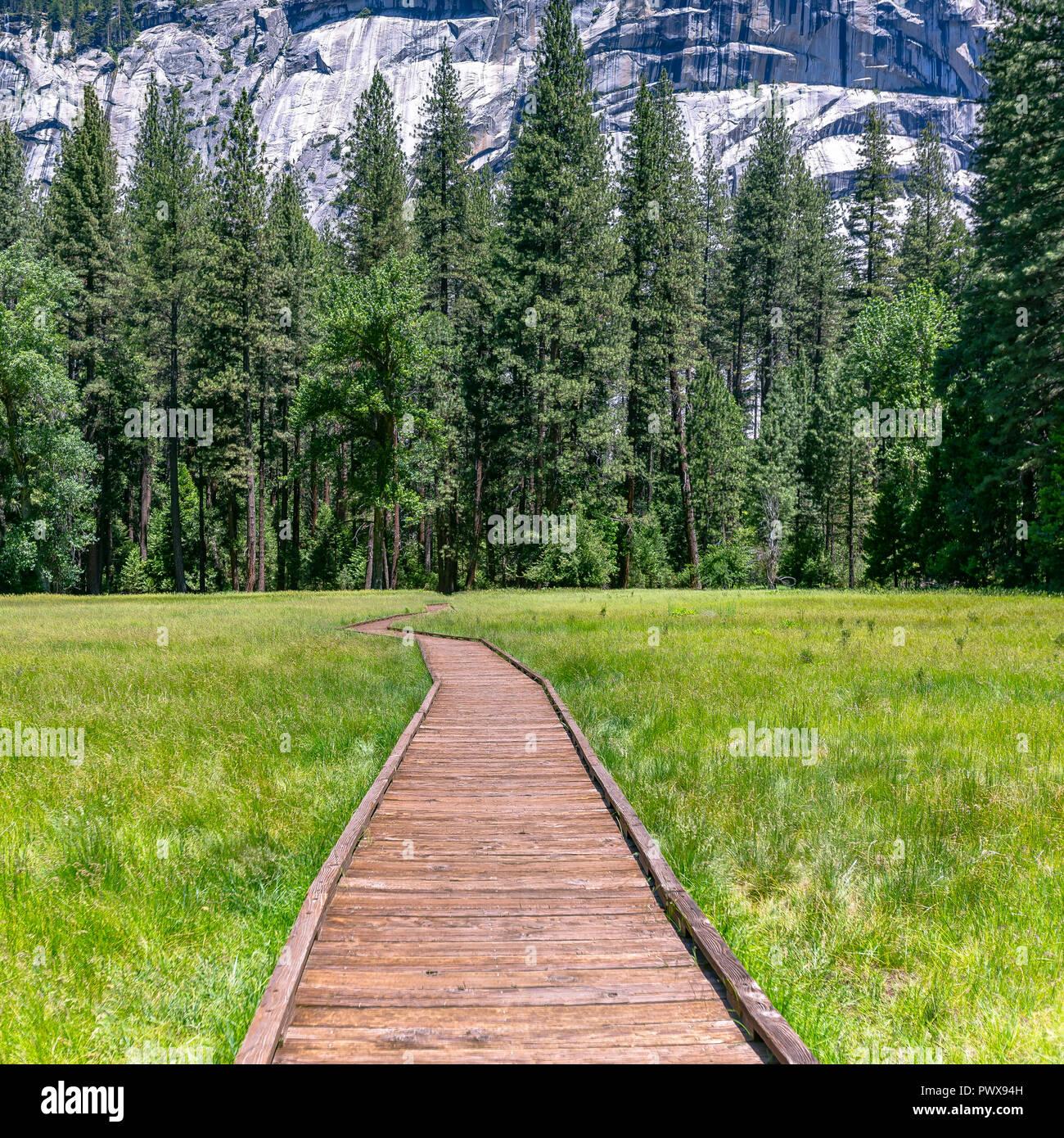 Percorso di legno su un terreno erboso in Yosemite CA Immagini Stock