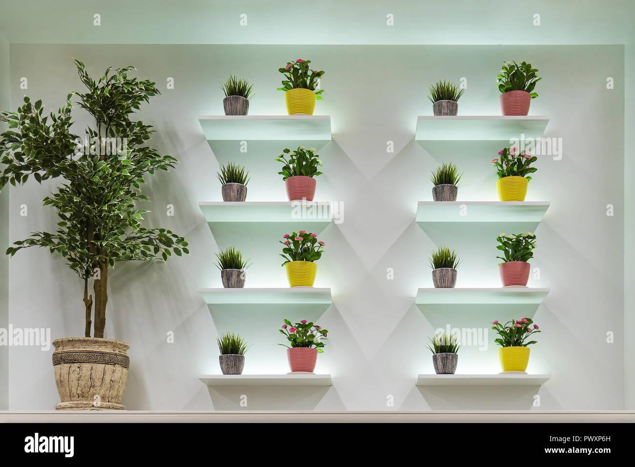 Mensole sul muro bianco e piante verdi in vaso elegante design