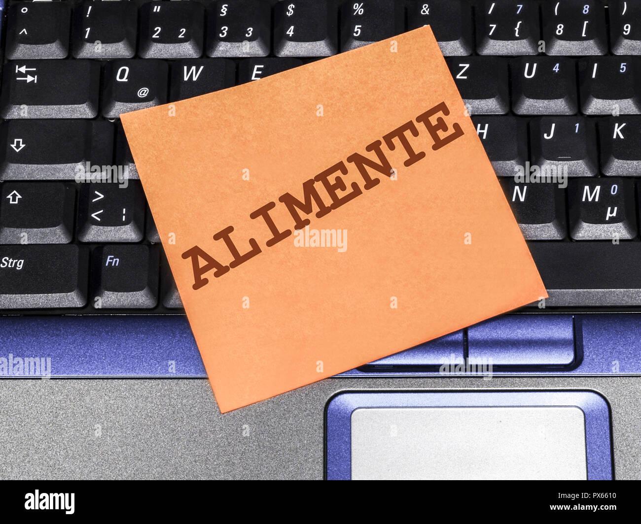 Nota Memo sul notebook, alimony Immagini Stock