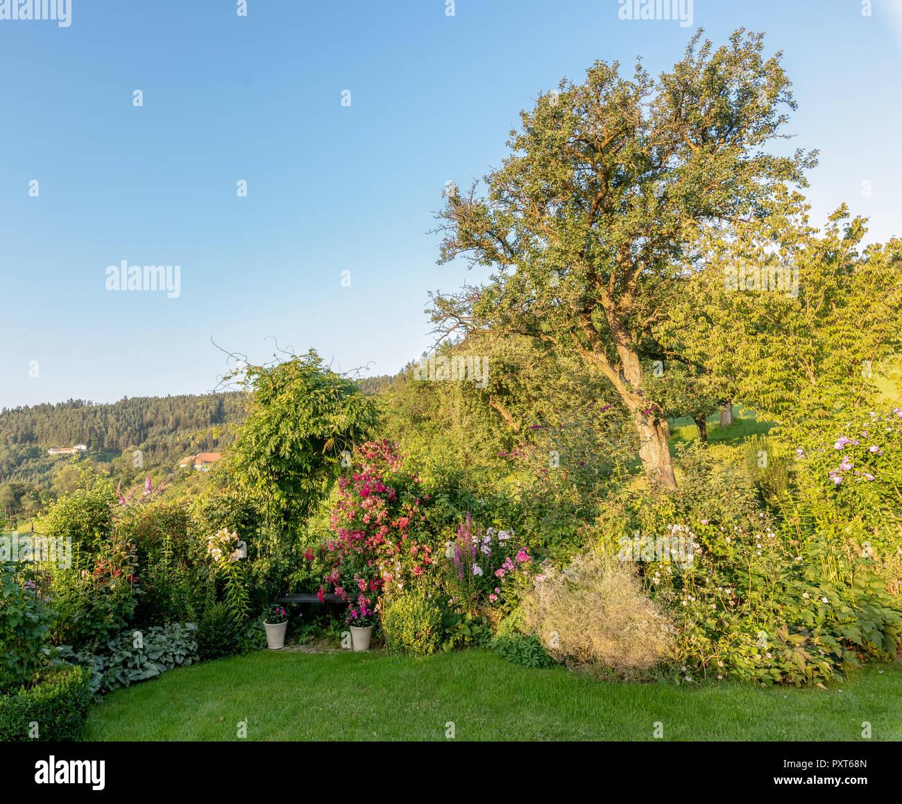 Progettare Un Giardino In Campagna disegni da giardino immagini e fotos stock - alamy