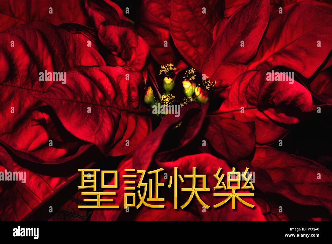 Buon Natale Del C Testo.Il Testo In Cinese 聖誕快樂 Significa Buon Natale Che Si Trova