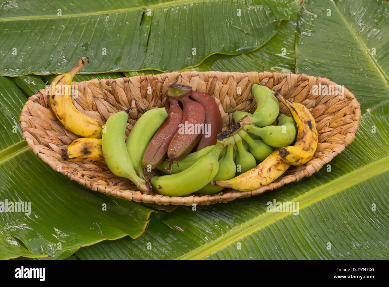 Come Coltivare Un Banano banane varietà su una foglia di banano. tre diverse