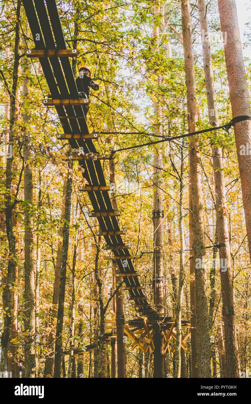 Tree Top trail. percorso in treccia. Sport attivo. La ricreazione. Scene d'autunno. Immagini Stock