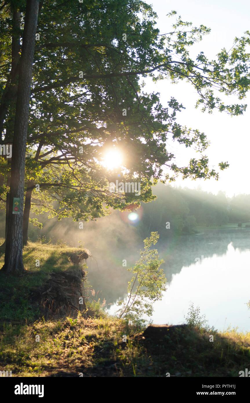 Bella e soleggiata mattina. Nebbia bianco stabilisce oltre il fiume. Immagini Stock