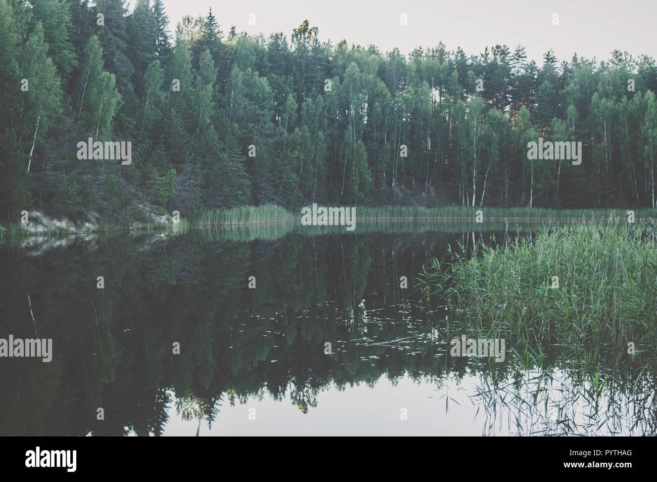 Verde paesaggio vista con alberi verdi e riflesso nell'acqua. L'estate. Immagini Stock