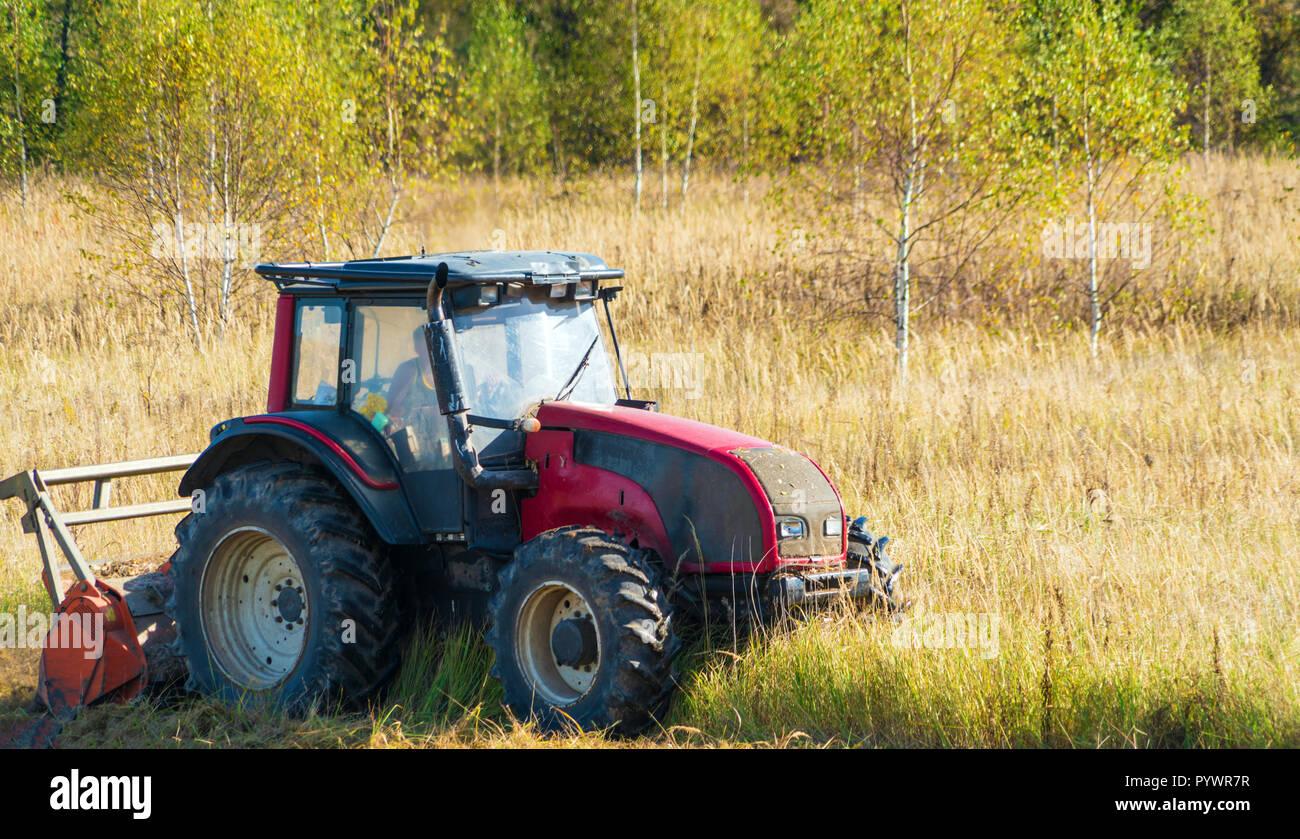 Autunno campo rurale con un trattore rosso che mows erba secca, Russia Foto Stock
