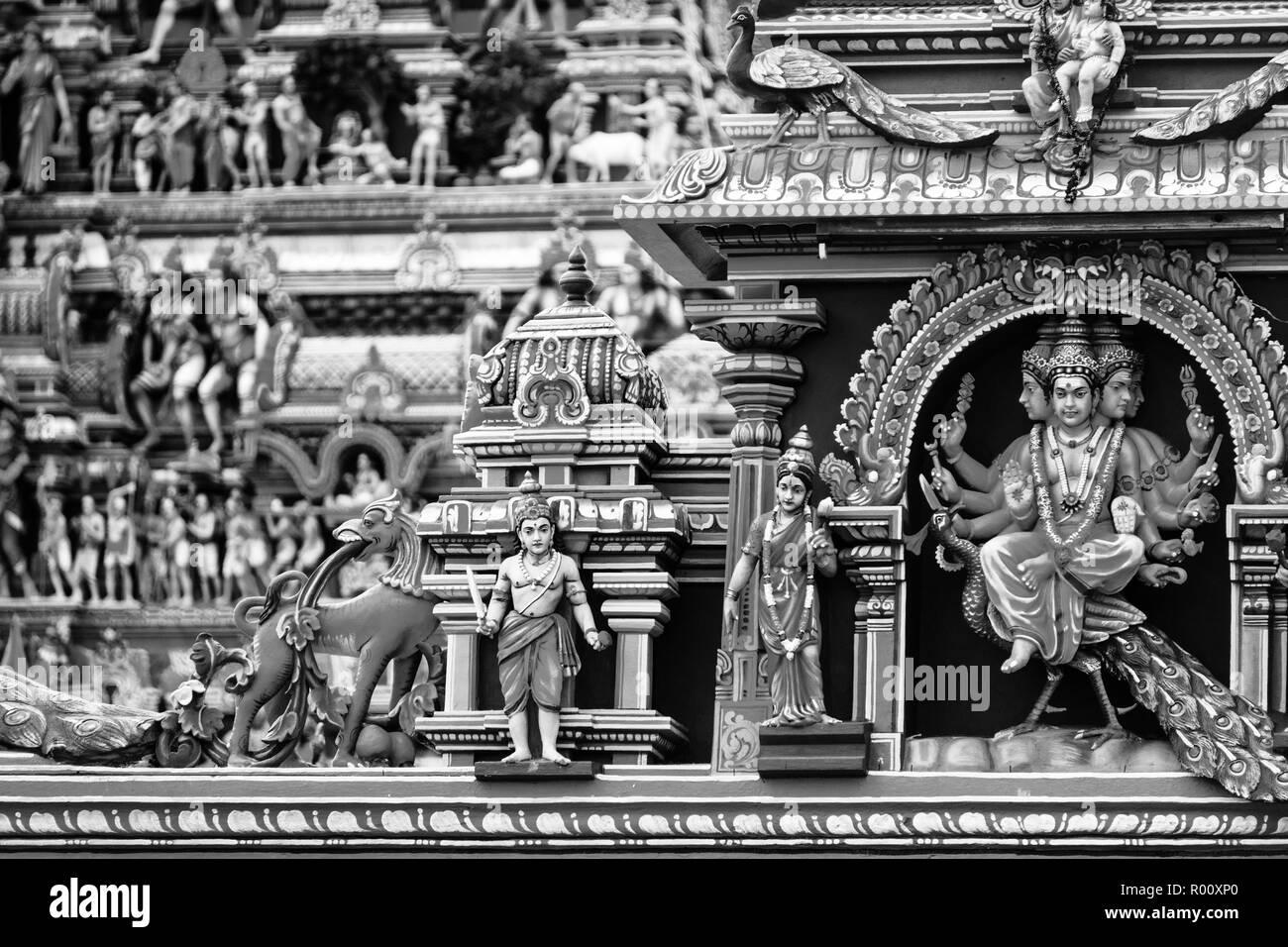 Nero Tamil micio