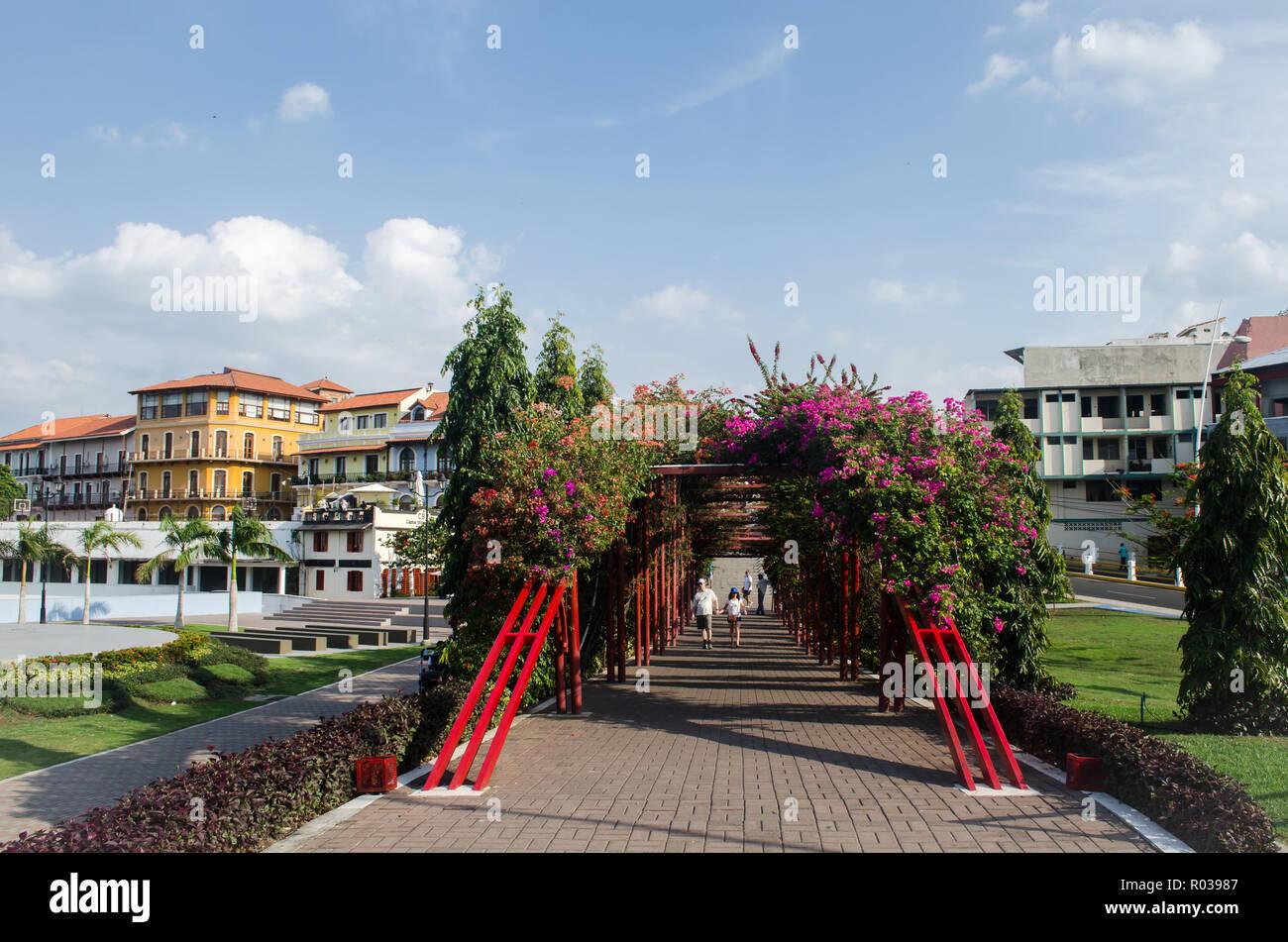 Il lussureggiante paesaggio di 'Parque V Centenario' all'ingresso della vecchia città di Panama quartiere. La vecchia città edifici può essere visto in lontananza Immagini Stock