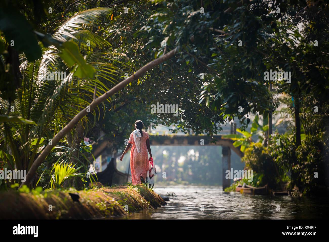 Backwaters vicino a Cochin (Alappuzha), Kerala, India, Asia Immagini Stock