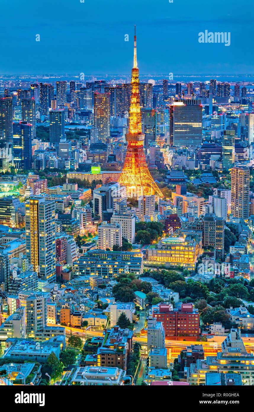 Lo skyline di Tokyo con la Torre di Tokyo di notte Foto Stock