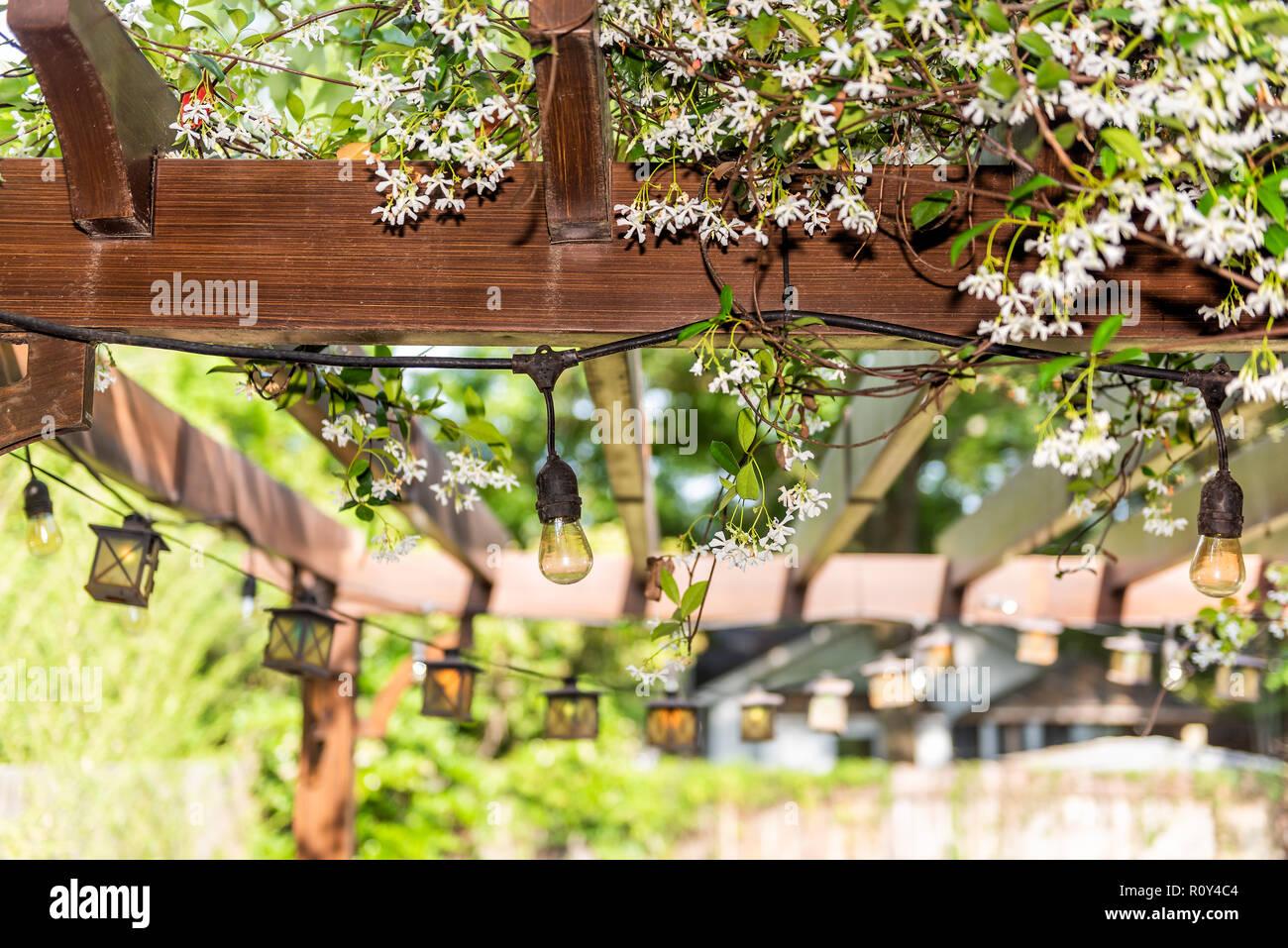 Luci Per Tettoia In Legno vista dettagliata del patio all'aperto molla bianco fiore