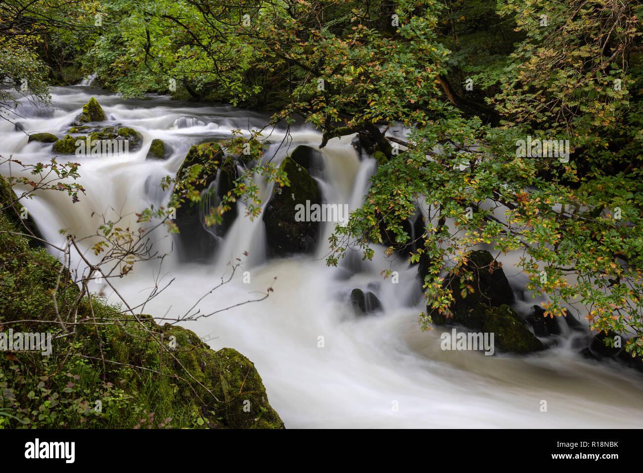Il flusso onirico del fiume sopra Brathay Colwith vigore, Lake District, Cumbria, Regno Unito Immagini Stock
