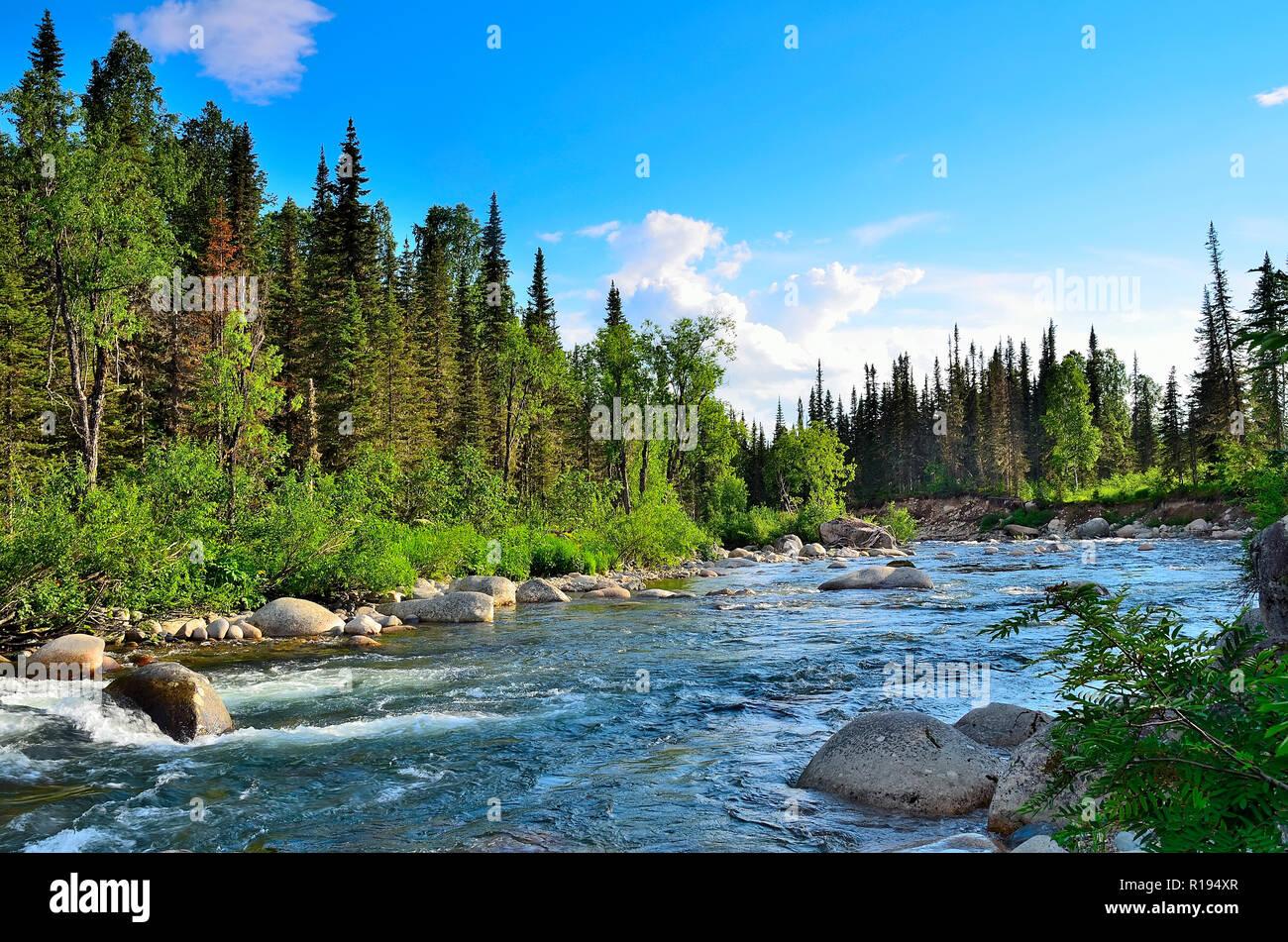 Enormi massi e rapide in che scorre veloce, seething, spruzzi di fiume di  montagna tra le sponde coperto da fitti boschi di conifere a bright  giornata di sole Foto stock - Alamy