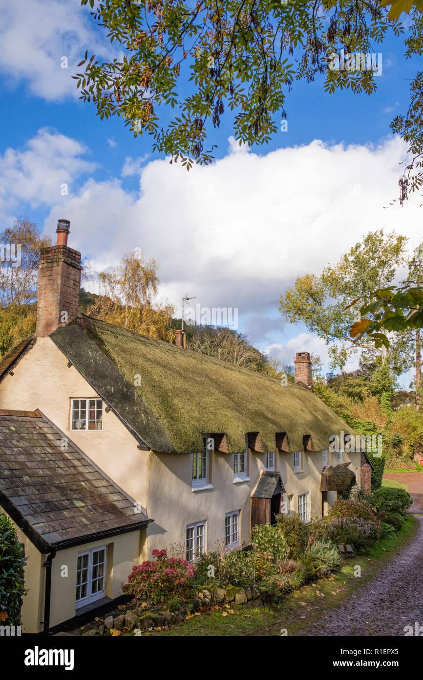 Cottage con il tetto di paglia nel pittoresco villaggio di Dunster, Somerset, Inghilterra, Regno Unito Foto Stock