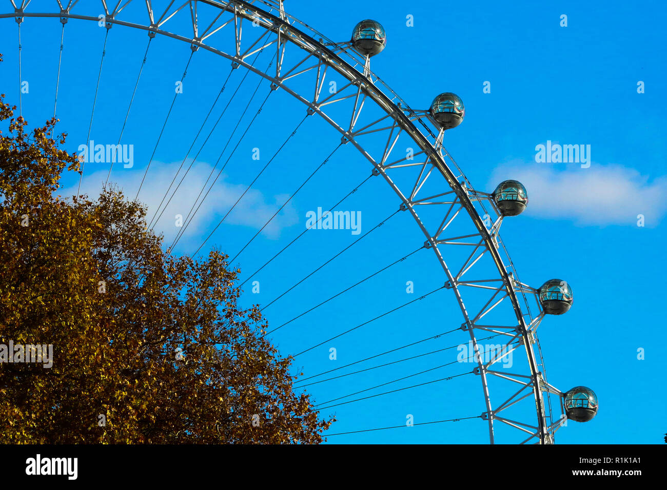 Londra, UK, 13 novembre 2018. Cielo blu sulla London Eye con autunno foglie colorate in primo piano, come visto da di Downing Street. Credito: Dinendra Haria/Alamy Live News Foto Stock