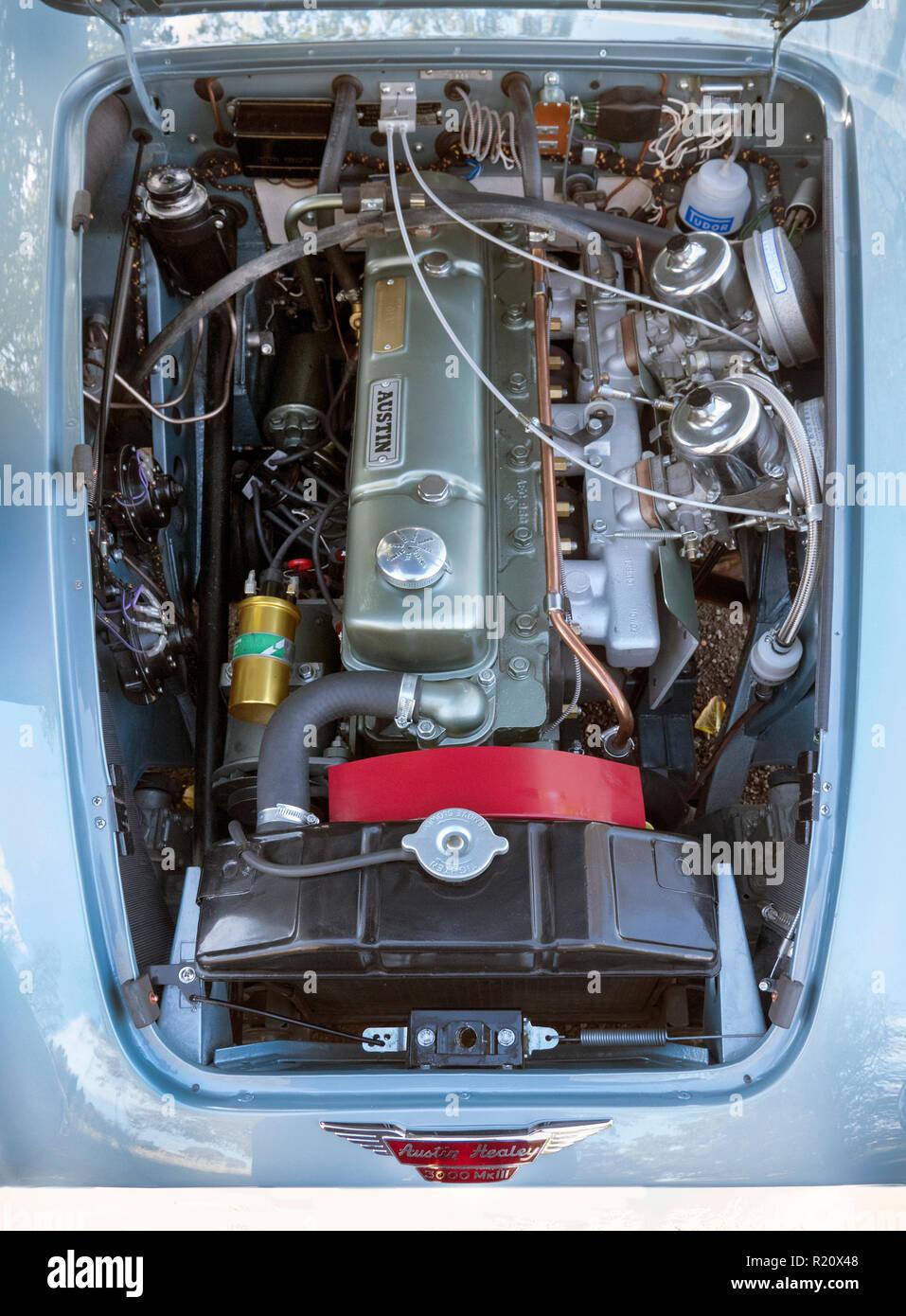 1964 Austin Healey BJ8 motore Immagini Stock