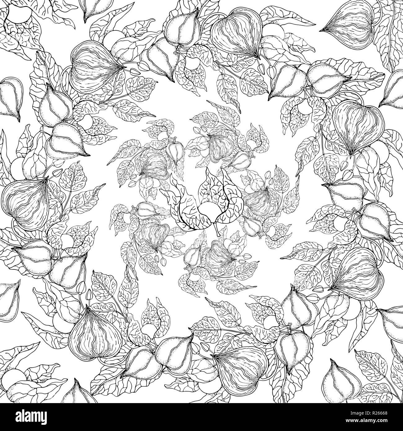 Doodle sfondo floreale nel vettore con scarabocchi in bianco e nero nella pagina di colorazione Immagini Stock