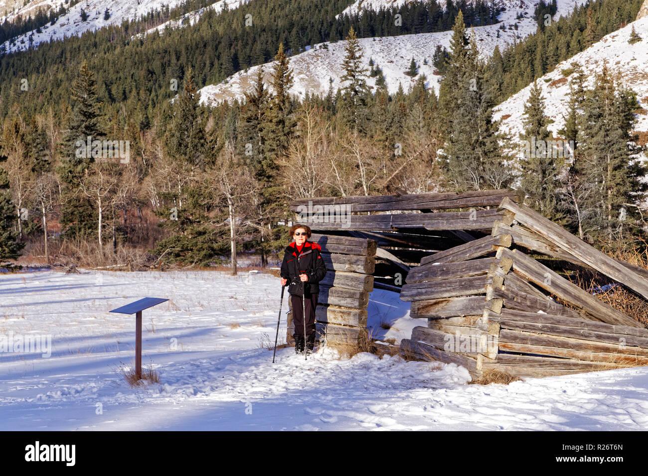 42,750.09107 close up, Donna persona escursionismo in piedi nella neve a piatto Moberly Log Cabin costruito intorno al 1909, il Parco Nazionale di Jasper, foresta di conifere backgr Foto Stock