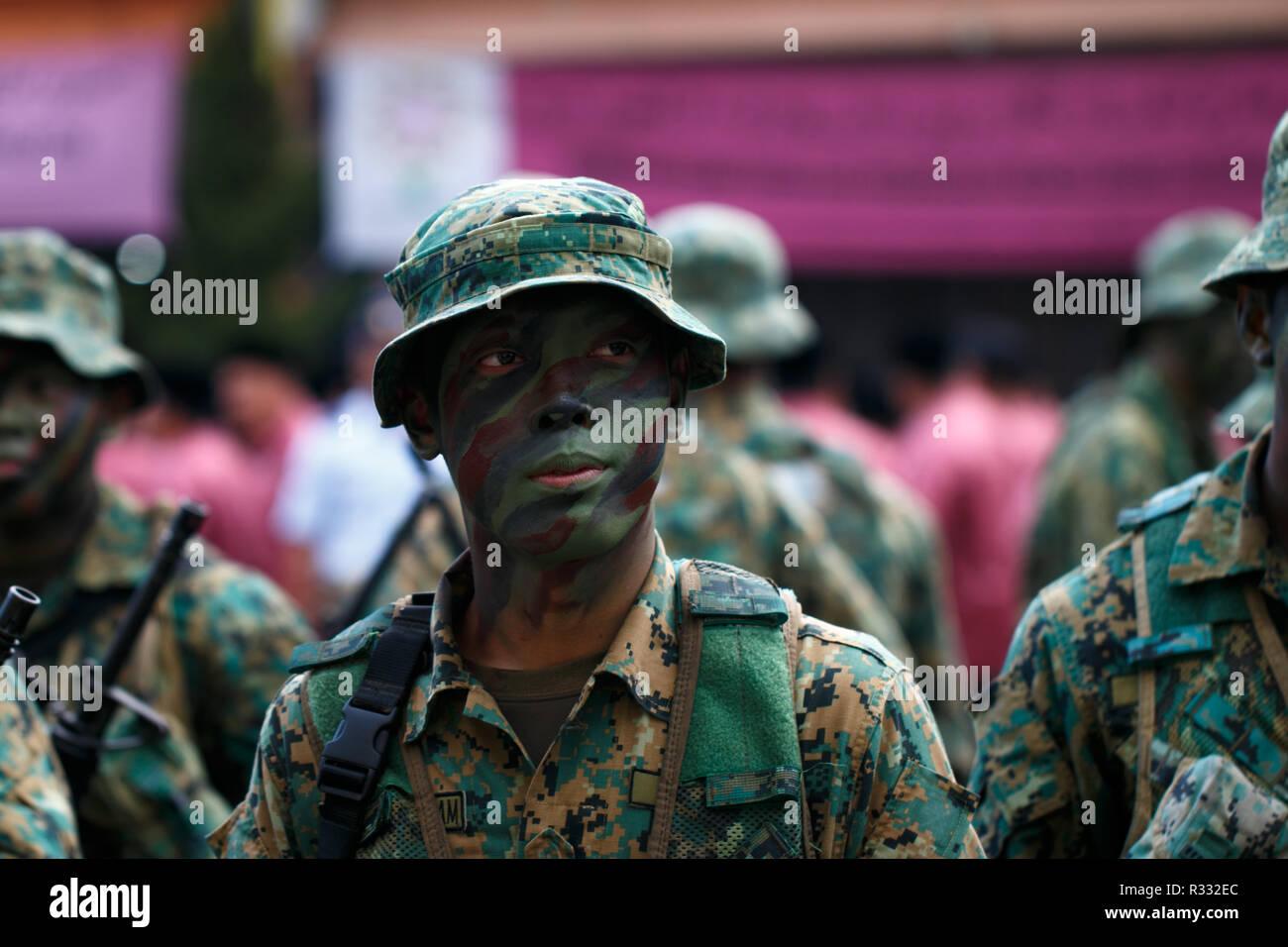 Brunei Giornata Nazionale Immagini Stock