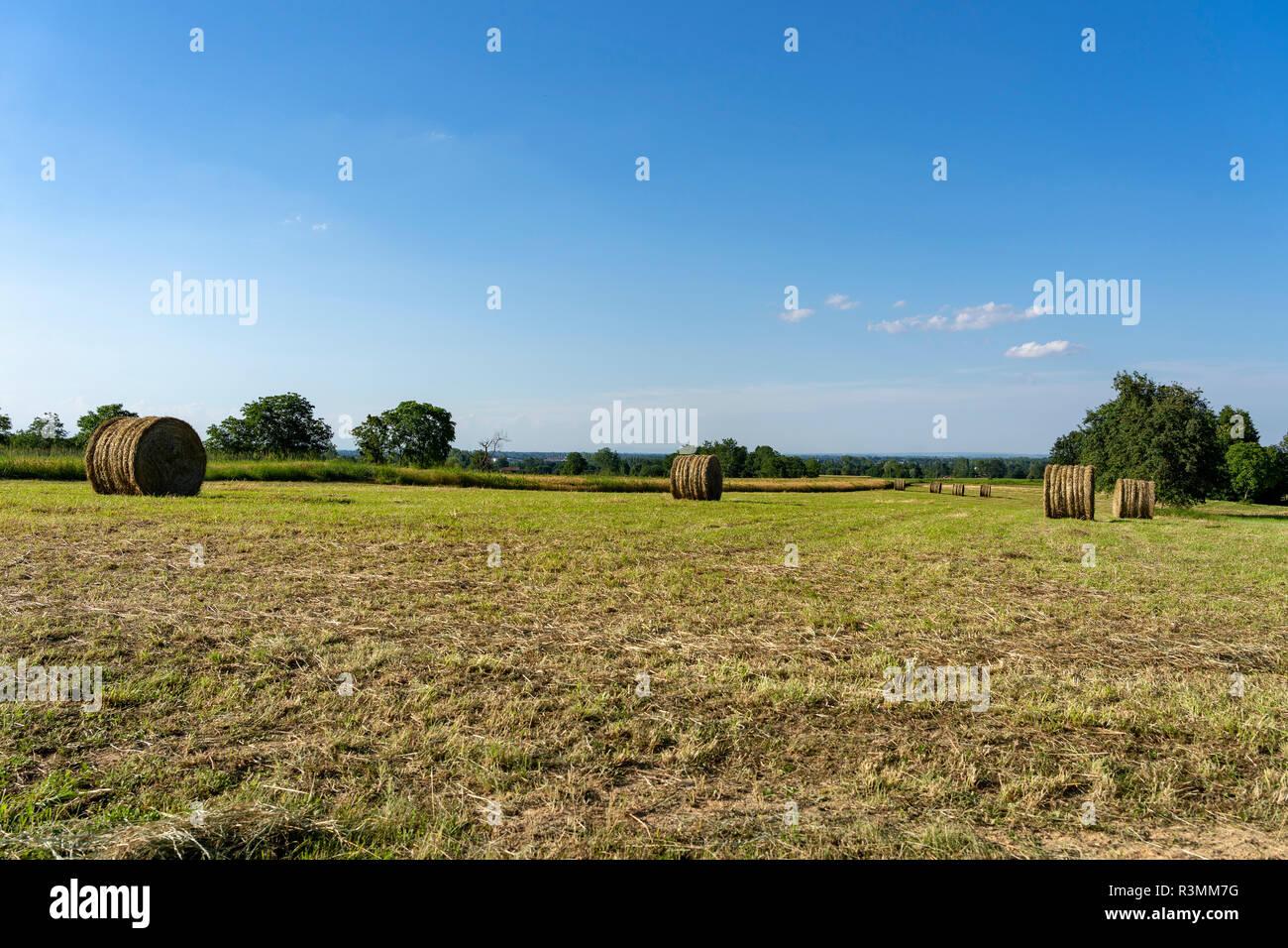 Paesaggio Di Campagna In Estate Vicino A Boves Cuneo Piemonte