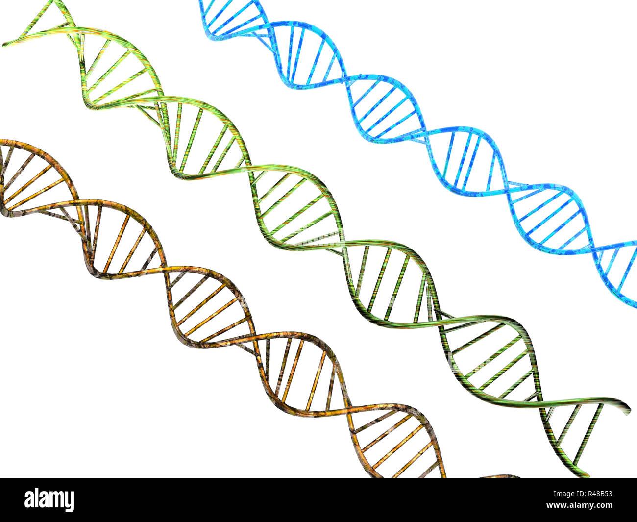 Il materiale genetico dna Immagini Stock