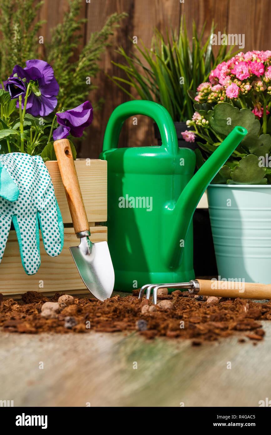 Giardinaggio E Fiori.Utensili Da Giardinaggio E Fiori Foto Immagine Stock 226552821