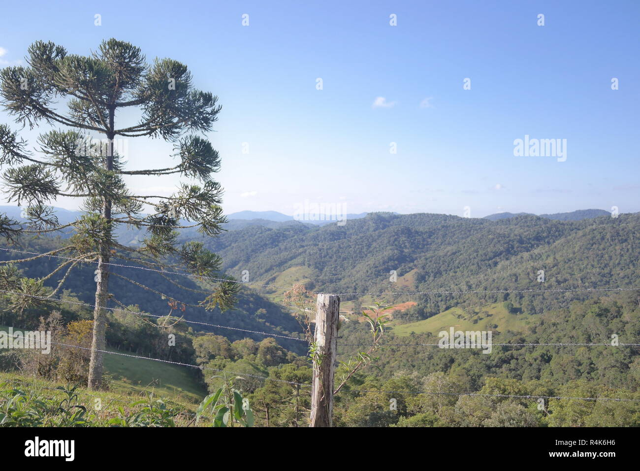 Serra Catarinense, Rancho queimado, Autunno, Inverno Santa Catarina, Brasile Immagini Stock