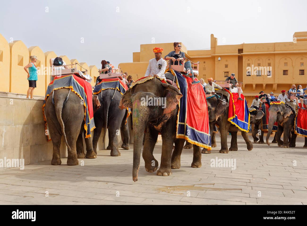 Gli elefanti e mahouts nel cortile del Forte Amber India Foto Stock