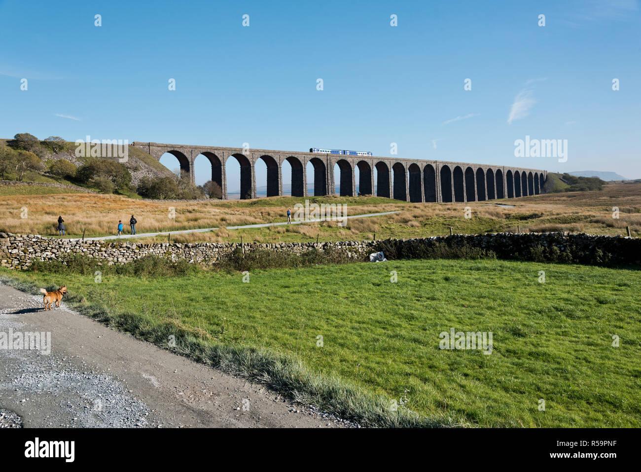 Un velocista treno passeggeri attraversa il viadotto Ribblehead, vicino Ingleton, Yorkshire Dales National Park, Regno Unito Foto Stock