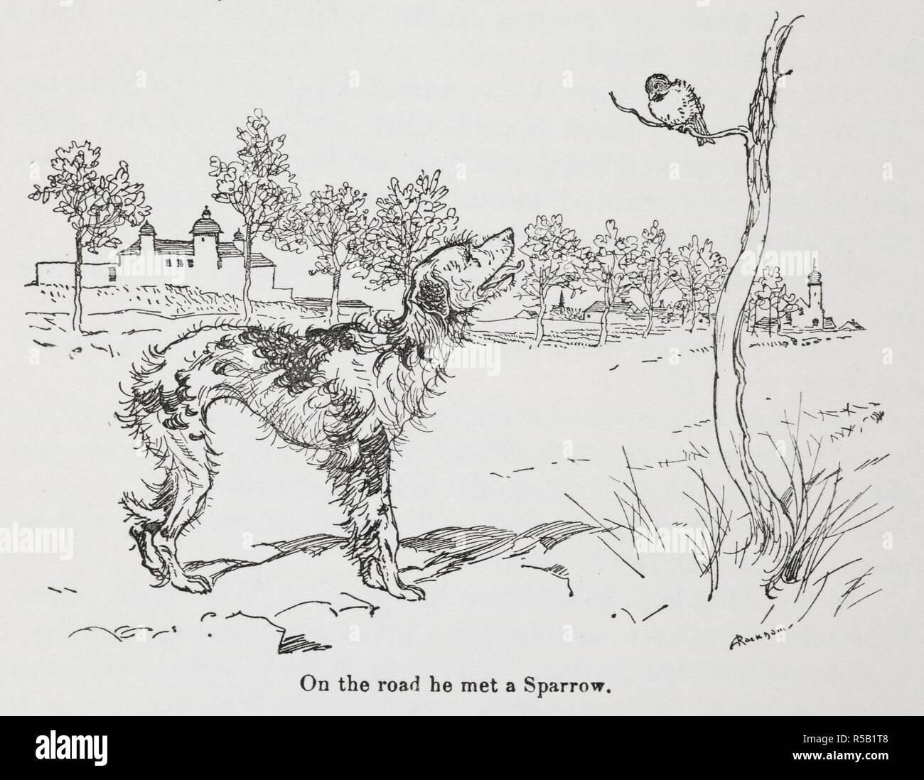 Risultati immagini per il cane e il passero grimm --illustrazione ?