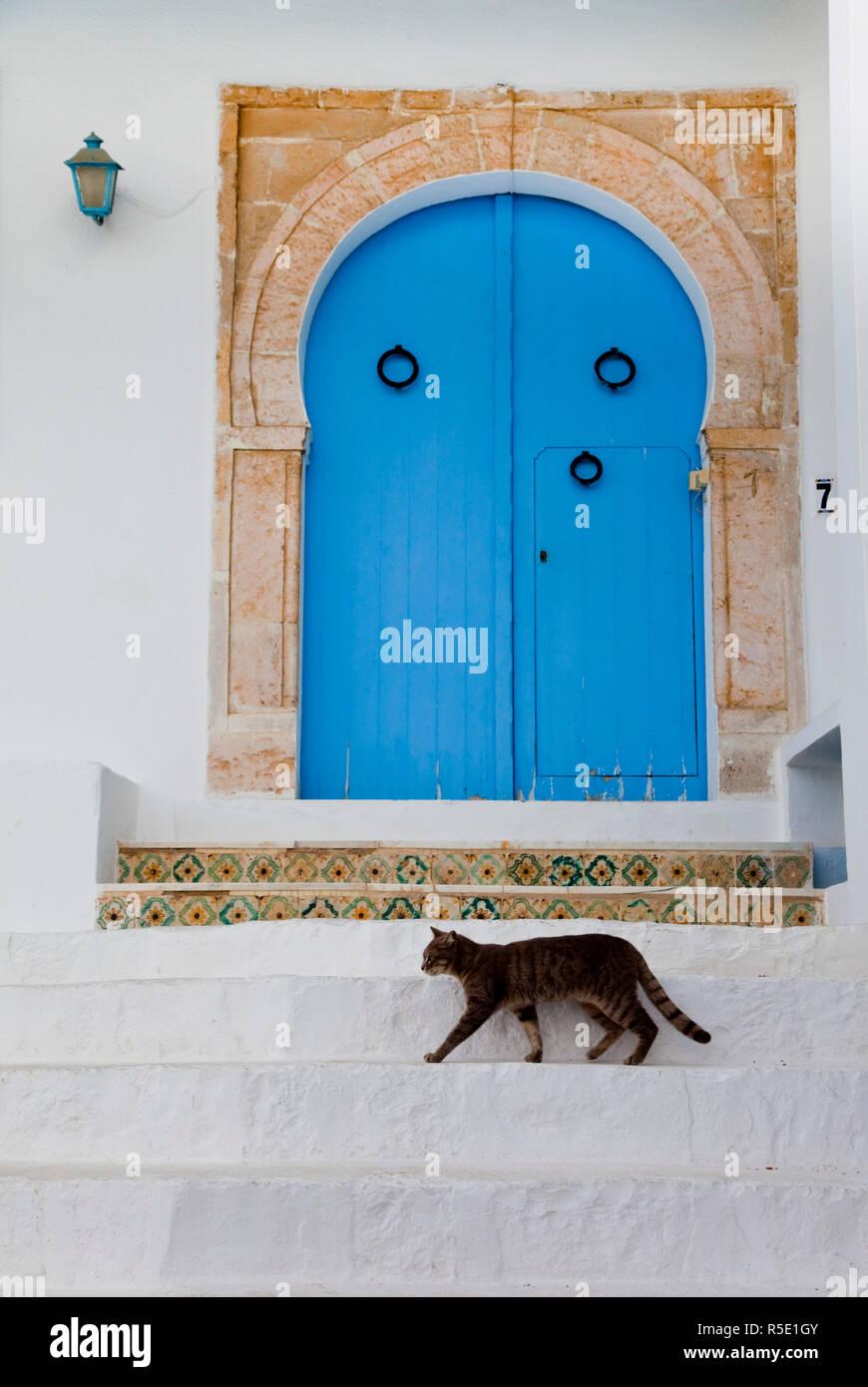 La Tunisia, Sidi Bou Said, costruzione di dettaglio Immagini Stock