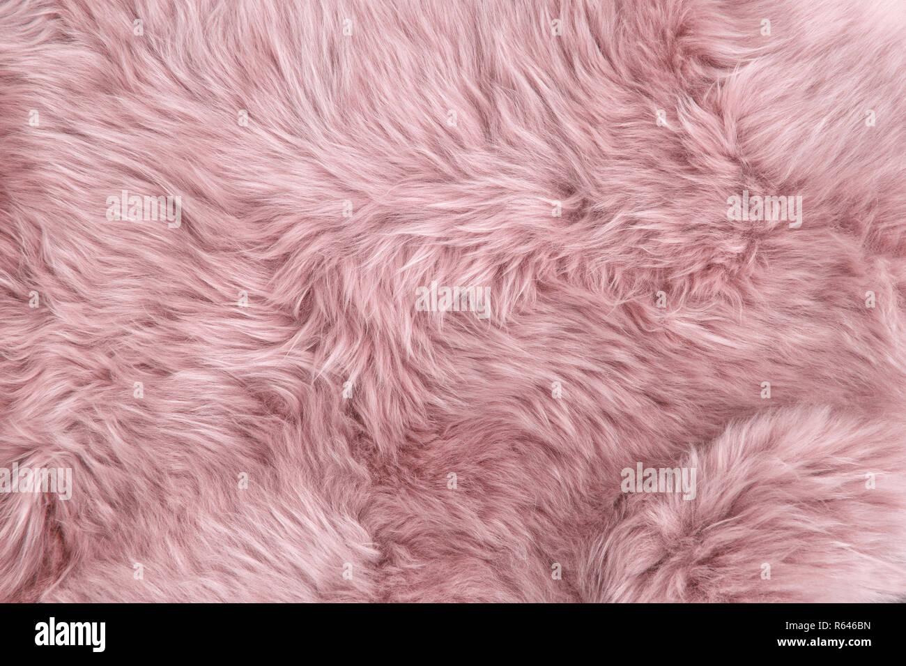 Rosa Pelliccia Di Pecora Pelle Di Pecora Naturale Rug Texture Di