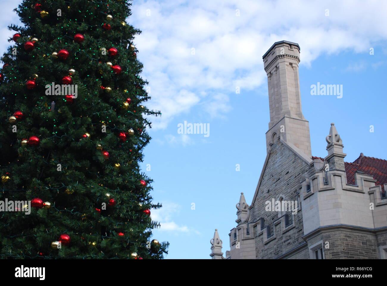 Albero Di Natale Grande.Grande Albero Di Natale Feste Decorazioni Inverno Festa Di