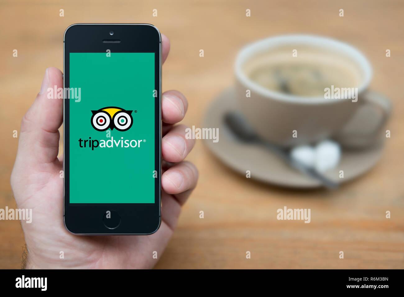 Un uomo guarda al suo iPhone che visualizza il Trip Advisor logo (solo uso editoriale). Immagini Stock