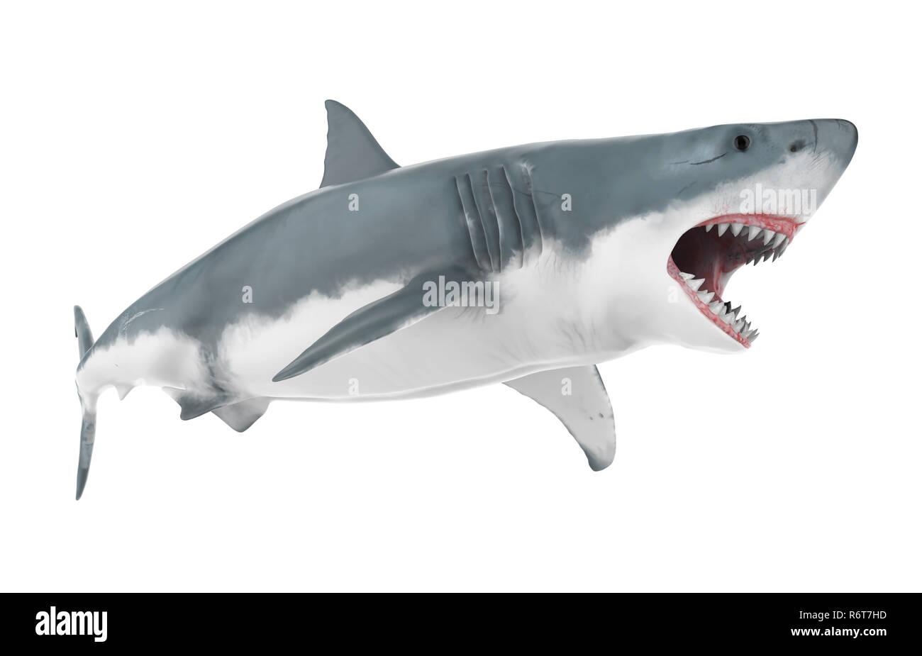 Shark Mouth 3d Immagini Shark Mouth 3d Fotos Stock Alamy