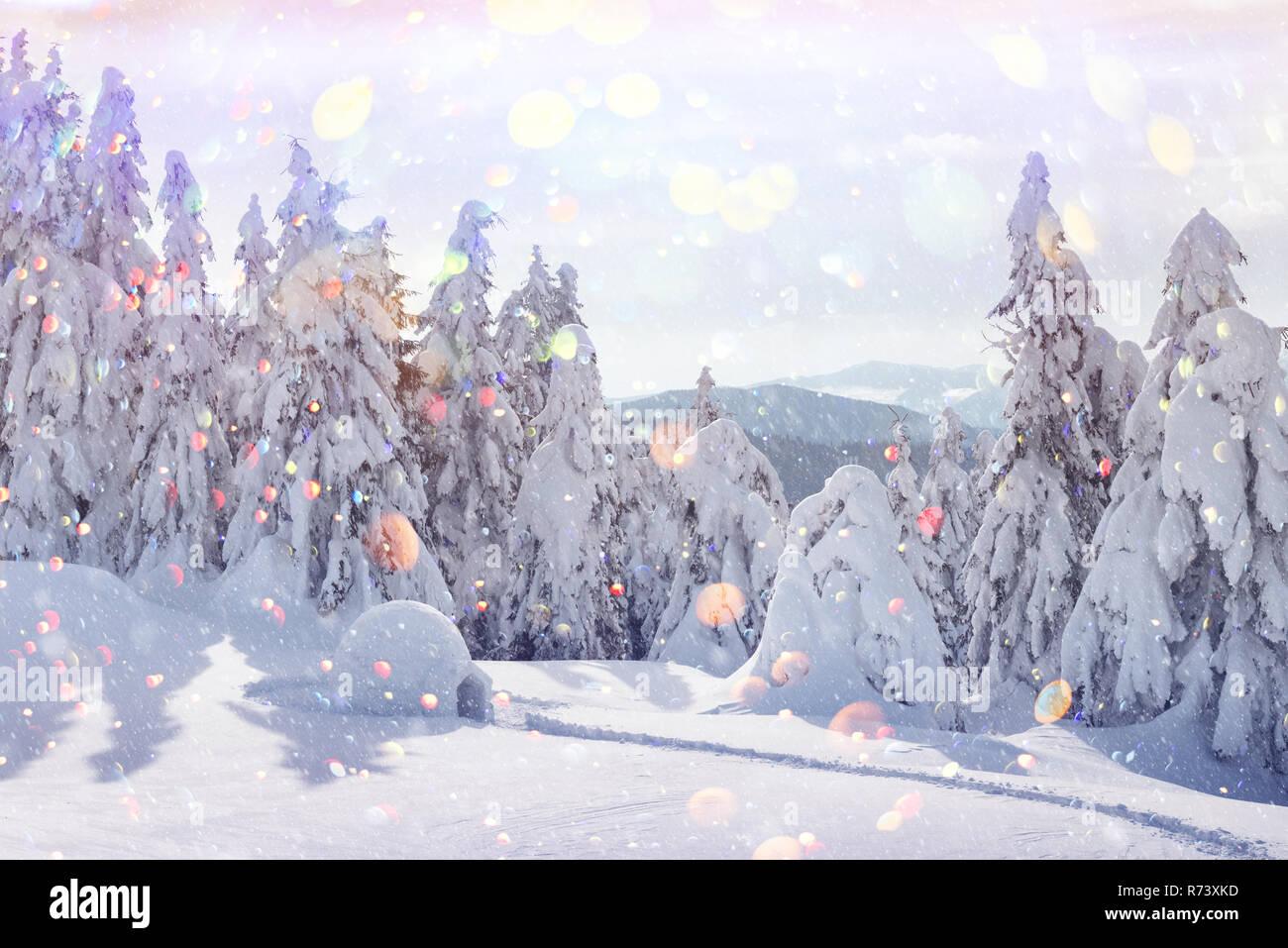 Neve Vera Casa Igloo In Inverno Le Montagne Dei Carpazi Coperte