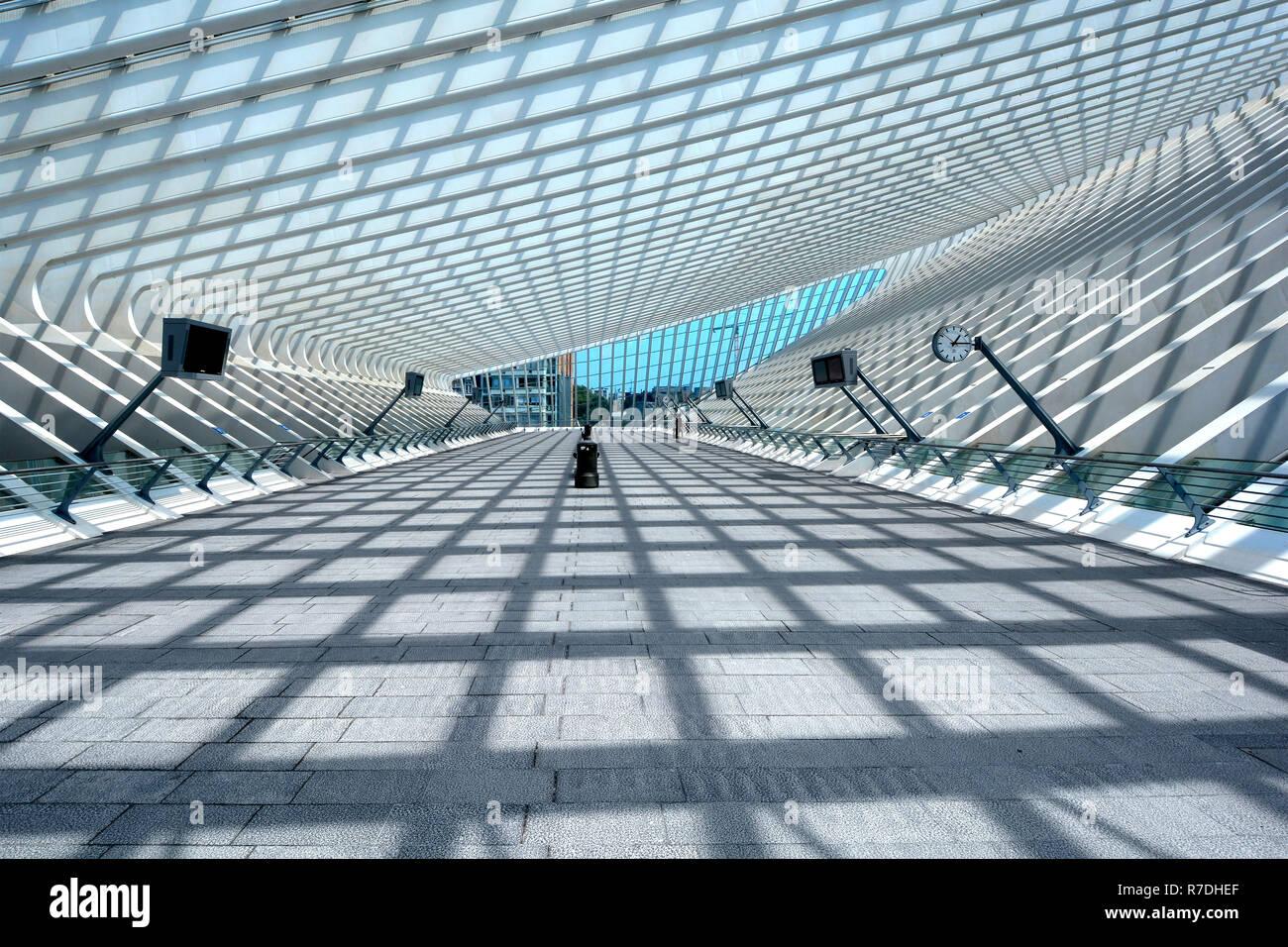 Vallonia simmetrico modello shadow sunshine architettura moderna in vetro struttura tetto & design i mezzi di trasporto pubblici Stazione ferroviaria Edificio Belgio Liege Foto Stock