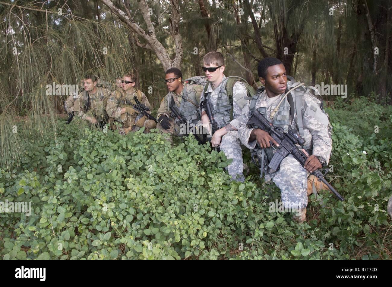 CAMP H.M. SMITH, Hawaii (30 marzo 2017) i soldati assegnati al segnale 112Batt. (Special Operations) (Airborne) - Special Operations Command pacifico, il supporto del segnale DET, attendere di essere prelevato da un elicottero durante Hammerhead la formazione sul campo di esercizio/formazione situazionale esercizio 17-2, 30 marzo 2017. FTX Hammerhead è un evento semestrale per sviluppare e rafforzare le fondamentali rifleman compiti inerenti ad ogni soldato indipendentemente dal militare specialità professionali. Foto Stock