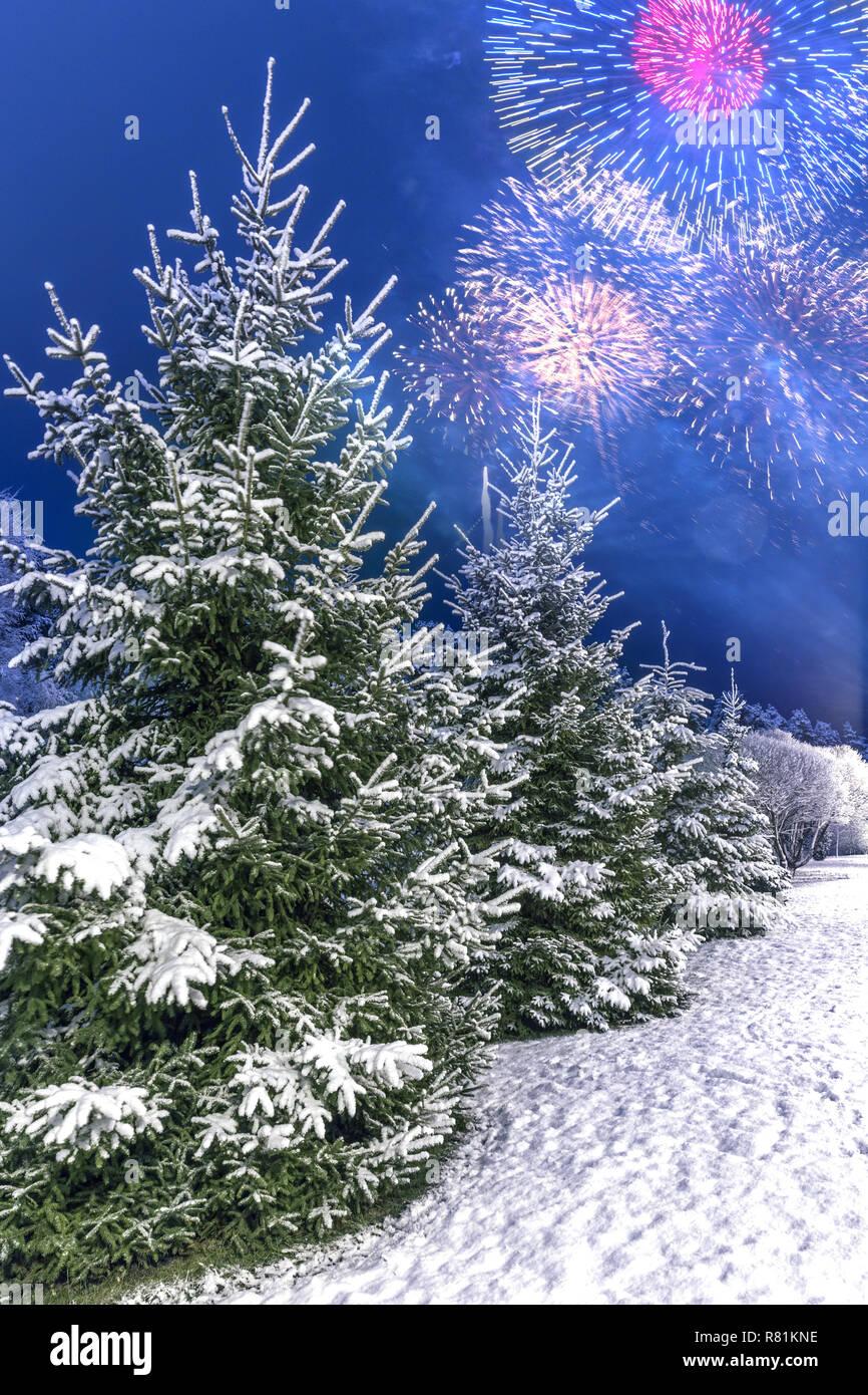 Sfondi Paesaggi Natalizi.Paesaggio Invernale Con Alberi Di Natale Con Neve Contro Lo Sfondo Di Fuochi D Artificio Di Festa Di Saluto Per Celebrare Il Nuovo Anno 2019 O Di Natale Foto Stock Alamy