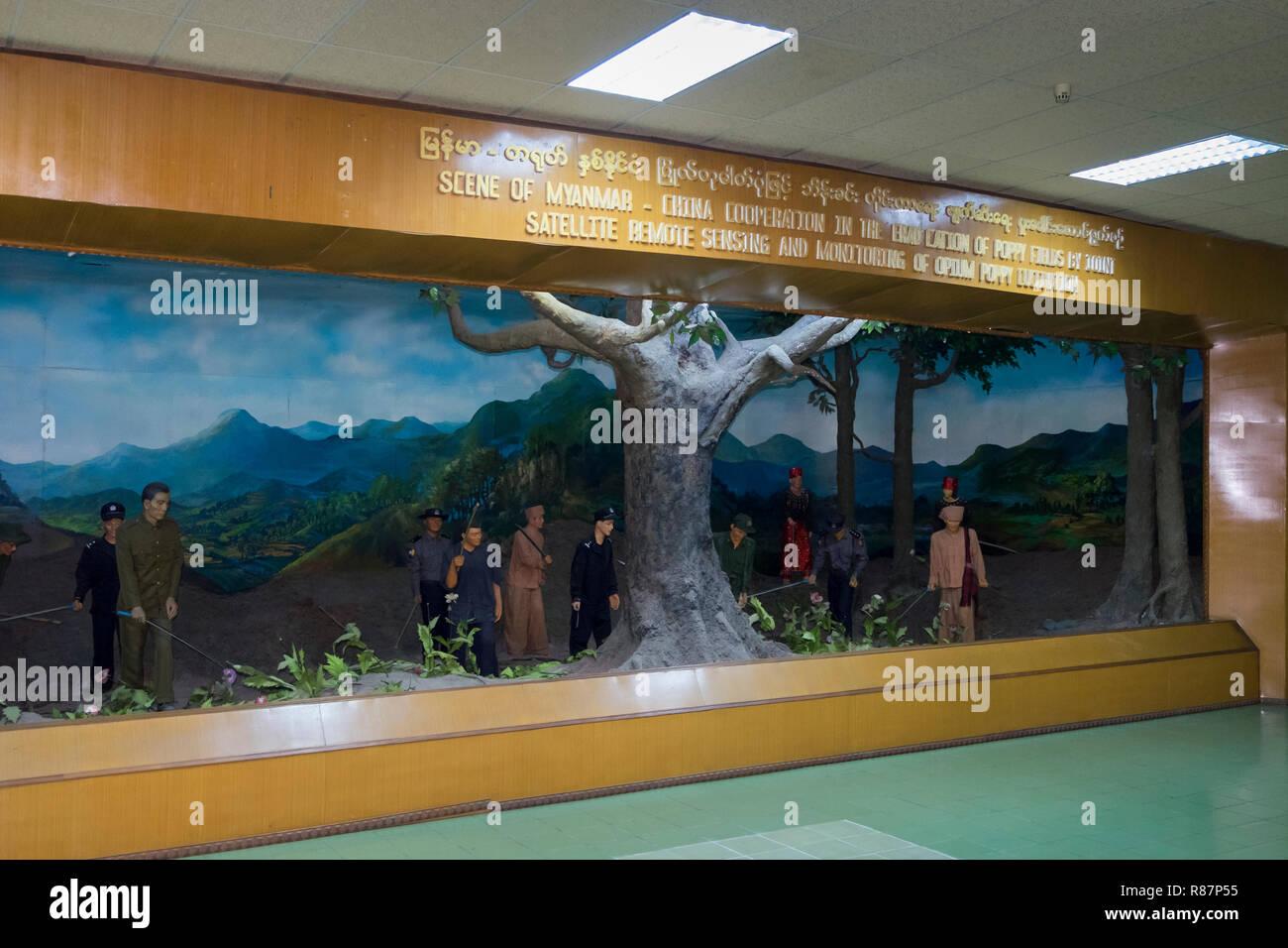 Diorama che mostra la distruzione di papavero alla eliminazione del farmaco Museum di Yangon, Myanmar. Foto Stock