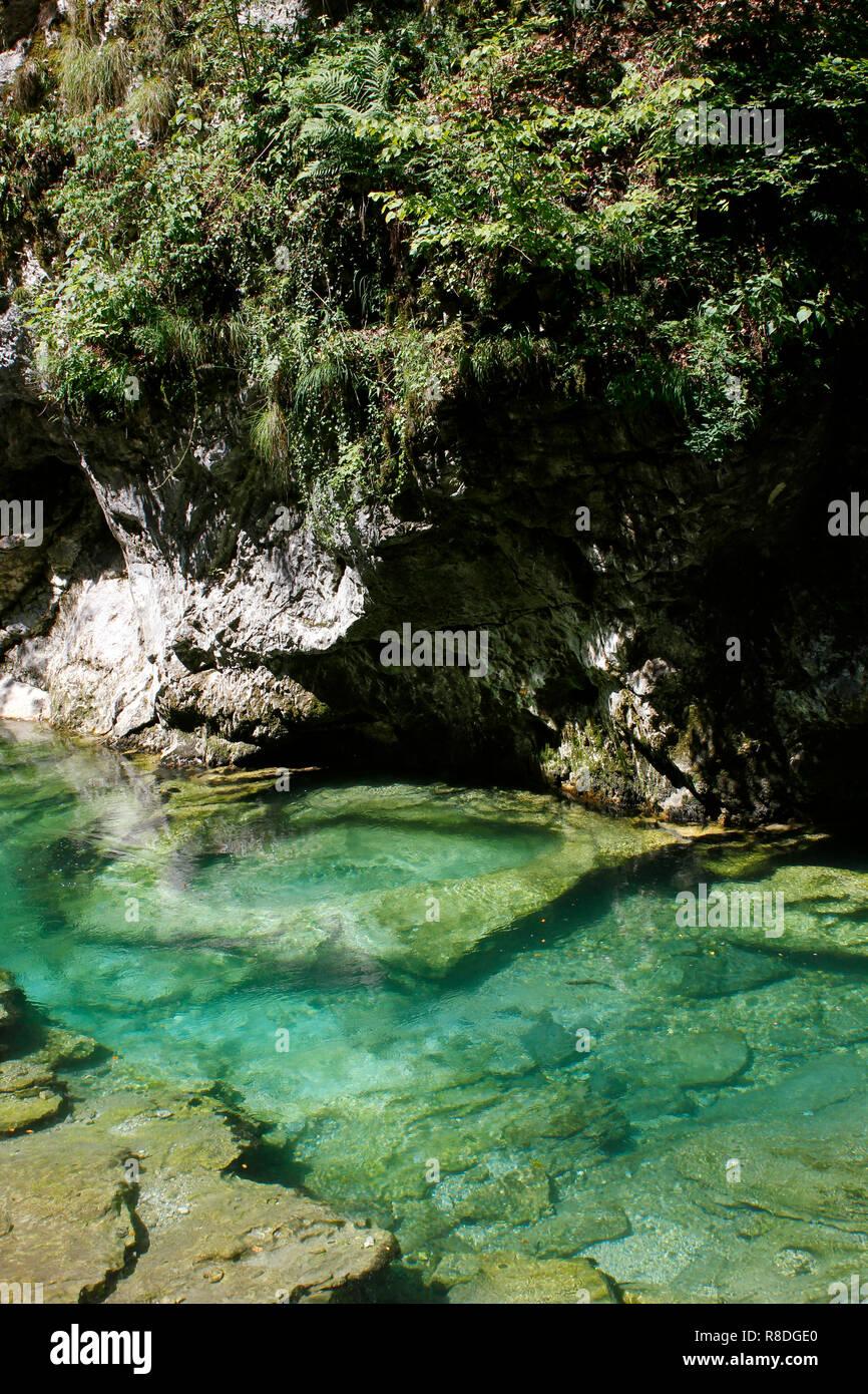 Le acque perfettamente pulite della gola. Alcuni km da Bled, Slovenia Immagini Stock